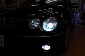 W215 HIDヘッドライトバルブ & LEDヘッドライトバルブ ライセンス灯LEDカスタム