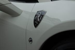 カーボン ウイングシールド クリアサイドマーカー 取り付け カスタムフェラーリ458イタリア